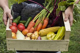 Homem segurando uma caixa de madeira com muitas verduras, fontes naturais de vitaminas.